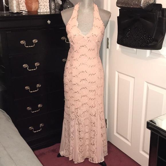 Wendye Chaitin Dresses & Skirts - STUNNING Light Peach/Dusty Rose Sequin Lace Dress